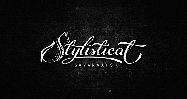 Stylish-Script-Logo-Design